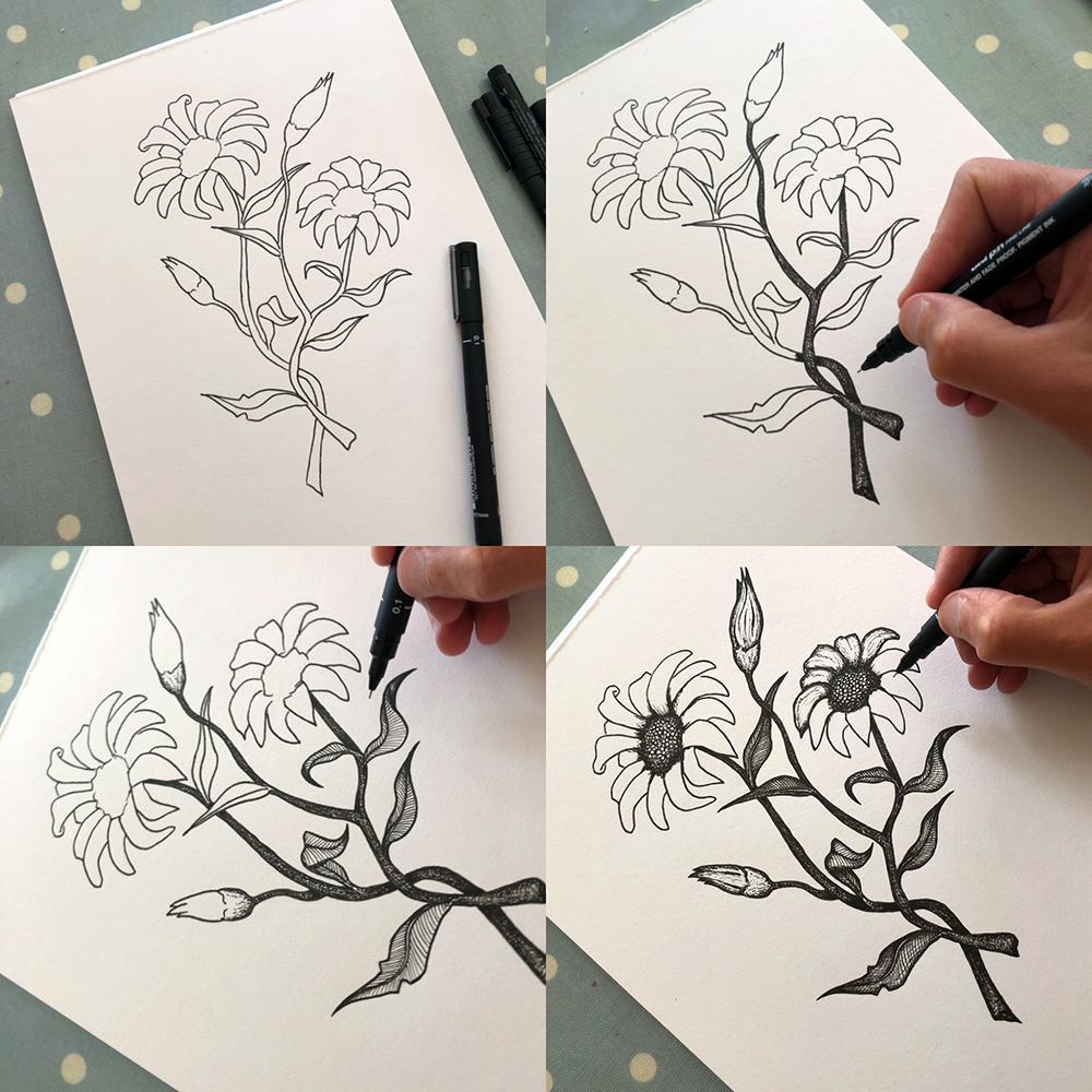 daisy flower pen sketch